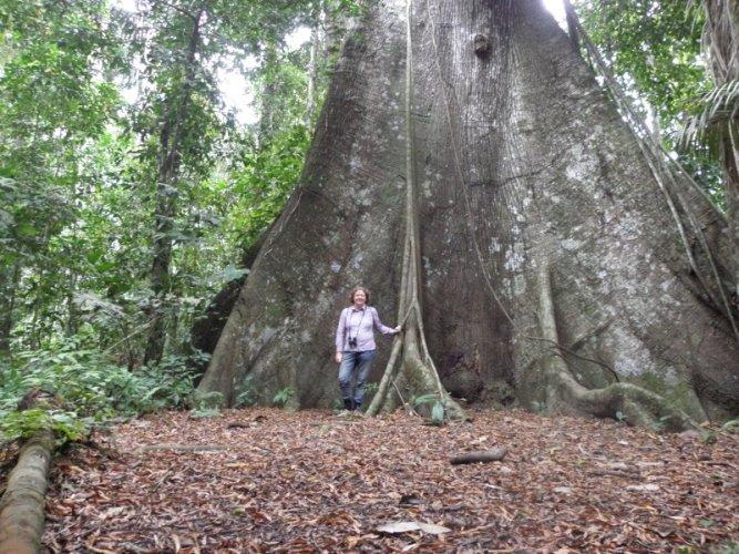 Manu National Park, WHS site